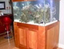 home_cube reef